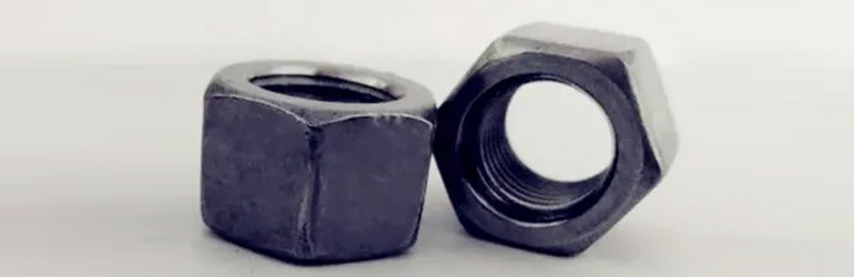 ASTM A194 Carbon Steel Nuts