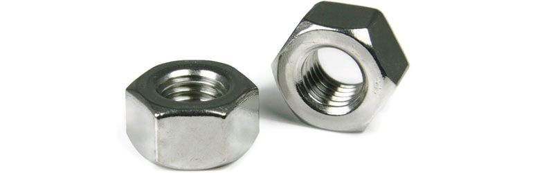 Alloy C22 Nuts