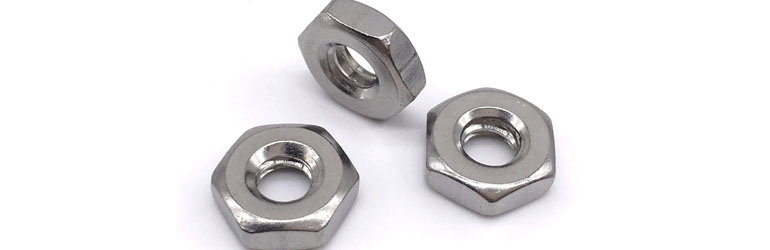 Hastelloy C22 Hex Nuts