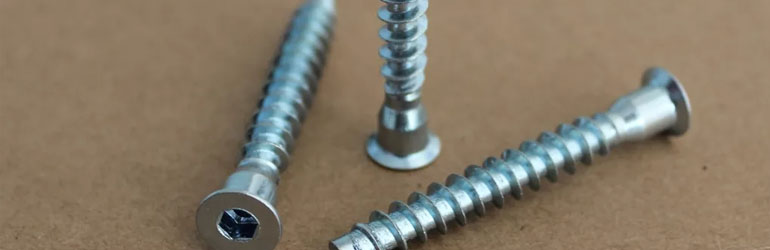 Incoloy Alloy 825 Screws