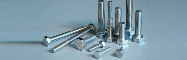 Stainless Steel 317 Bolts